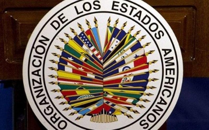 Relatório da OEA reconhece transparência