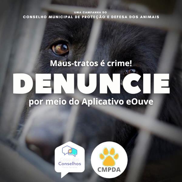 Conselho de Proteção Animal inicia conscientização contra maus-tratos